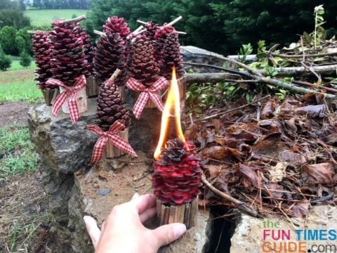 I decided to make pine cone fire starters... for the fireplace, a campfire, and as gifts