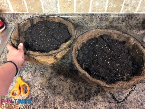 For these DIY Christmas hanging baskets, I filled each of the hanging baskets with potting soil.
