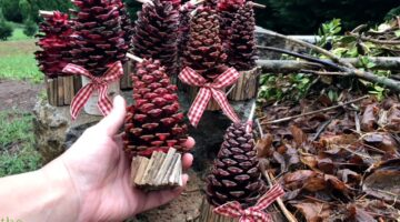 How To Make Pine Cone Fire Starters… For Your Fireplace, A Campfire, Or As Gifts
