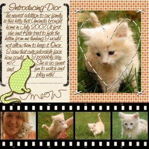 An adorable digital scrapbook page created for a new kitty cat. photo by wishymom