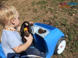 My son likes to collect pine cones on our property.